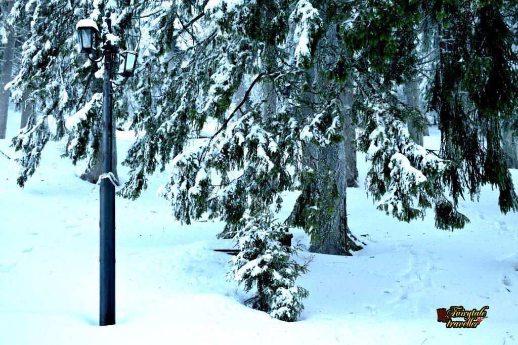 Peisaj de iarnă, stațiunea Straja